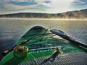 fish paddle board