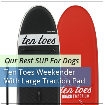 Our Best Paddle Board for Dogs